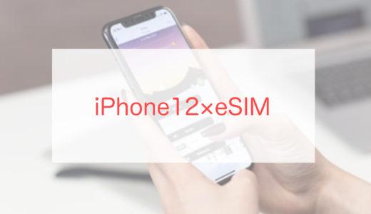 iPhone12でeSIMを使ってみた感想を初心者向けに解説します
