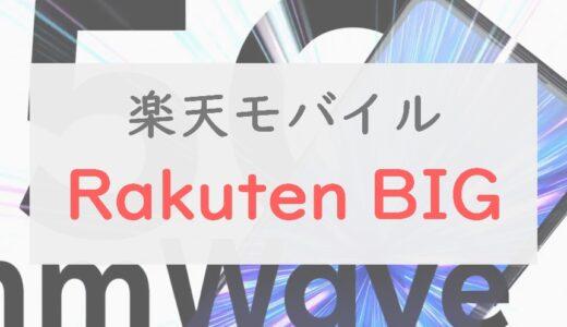 【2.5万円】「Rakuten BIG」は6.9インチ&内蔵インカメラの攻めたスマホ|注意点は3つある【レビュー】